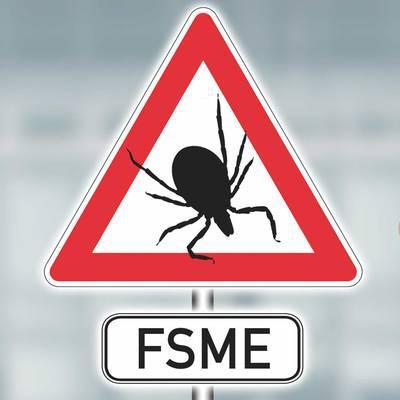 FSME: