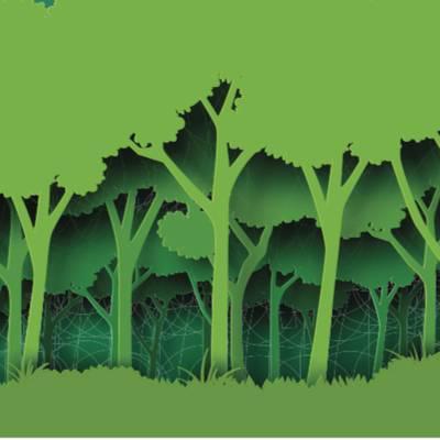 """""""Wald ist sinngebend"""""""
