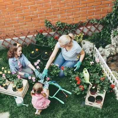 Vital im Garten