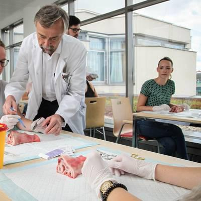 LK Zwettl: MedSummerSchool findet erneut statt