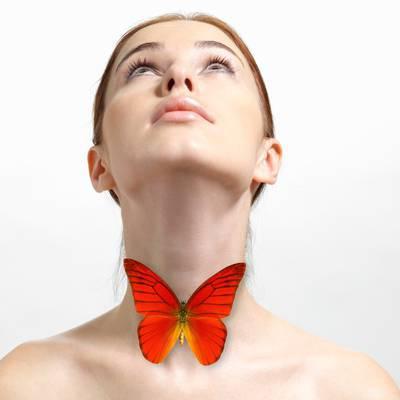 Aggressiver Schmetterling