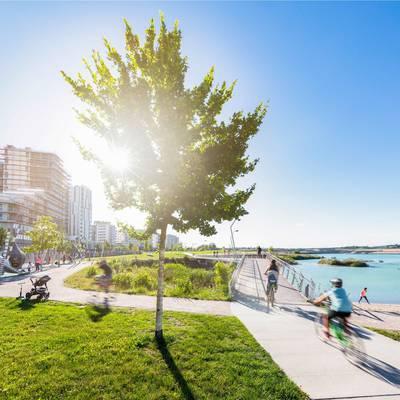 Klimaschutzprogramm Seestadt