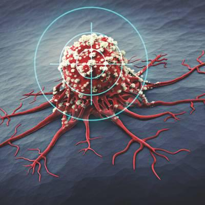 Neues aus der Krebsforschung