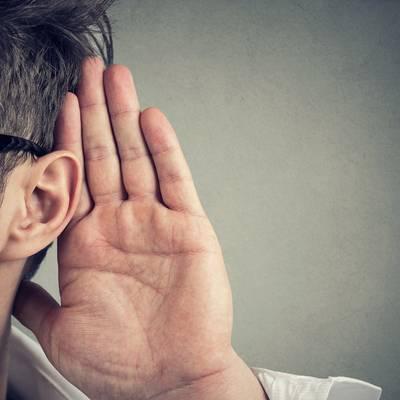 Spitz die Ohren!