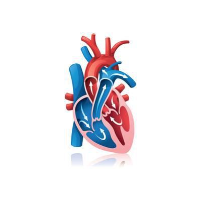 Herzensangelegenheiten