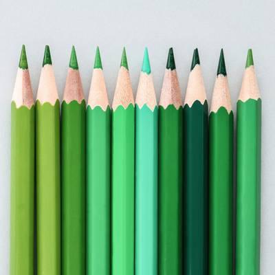 Die grüne Palette