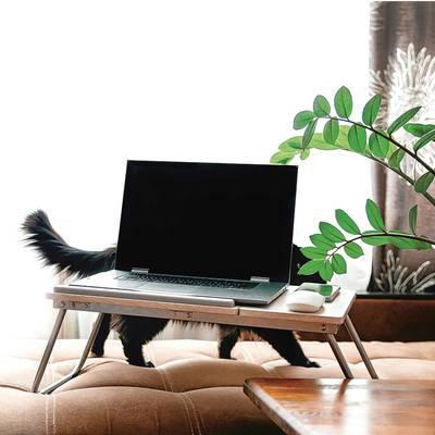 Die Lounge im Wohnzimmer