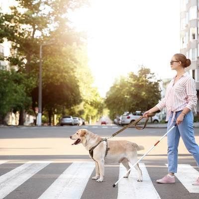Blind im Straßenverkehr