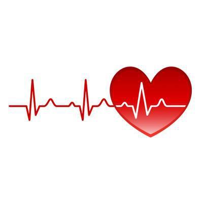 Facts & Figures zu Herz & Kreislauf